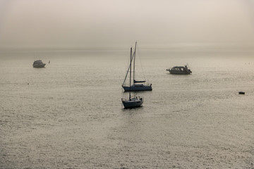 Boats Moored In Bay Of Islands Morning Mist
