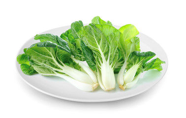 Pok Choi in plate isolated on a white background