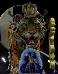 Reveller takes part in Carnival at Anhembi Sambadrome in Sao Paulo