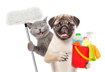 Cleaning concept. Cat and dog holds bucket with washing fluids and mop in paw. isolated on white background