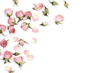 Border of small dry roses on white background. Place for text. Wall mural
