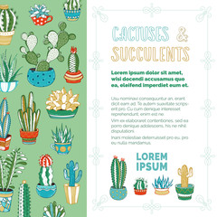 Cactuses and succulents vector background.