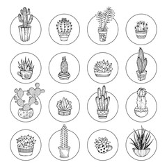 Vector doodles cacti and succulent icon set.
