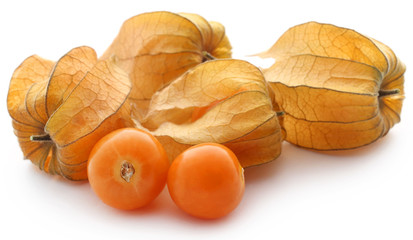 Fresh edible physalis