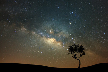 Night landscape with milky way and silhouette of tree, Starry sky with stars. Beautiful universe. Space background