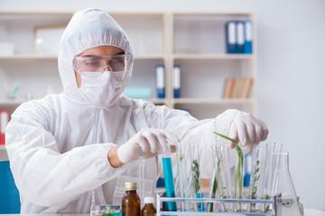 Biotechnology scientist chemist working in lab