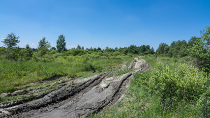 Off-road track with tire imprints in summer landscape and blue sky. The muddy, bumpy path in green deserted military area with trees, bushes and grass.