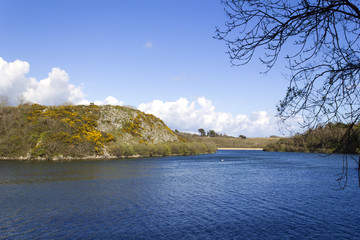 Bosherston Lily Ponds deserted in spring sunshine, Bosherston, Pembrokeshire, Wales, UK
