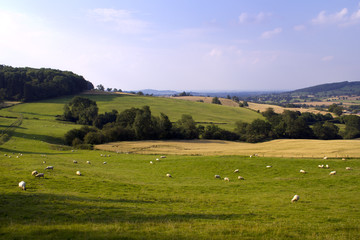 Evening sunshine view of an idyllic valley in the Cotswold countryside near Winchcombe, Gloucesteshire, UK.