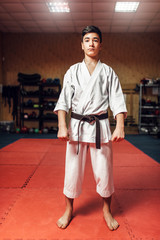 Martial arts, young fighter, black belt