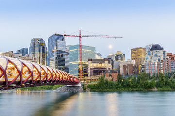 Wall Mural - Calgary downtown with peace bridge and office buildings