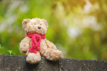 Classic teddy bear with red bow.
