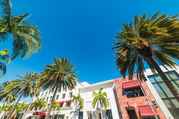 Rodeo drive on a sunny day