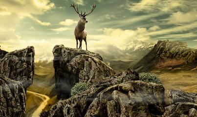 deer in wildness_photo-manipulation