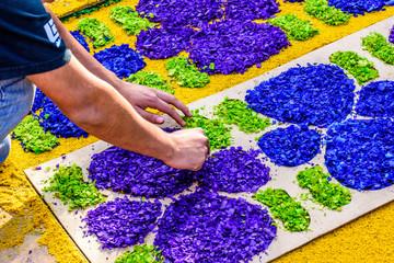 Making dyed sawdust Lent carpet, Antigua, Guatemala