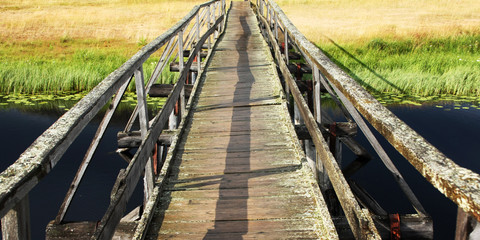 An old wooden bridge. Sunny day. Dark lake water and floating plants. Summer in Russia. Empty walkway. Russian North countryside. Kenozersky National Park. Wide photo.