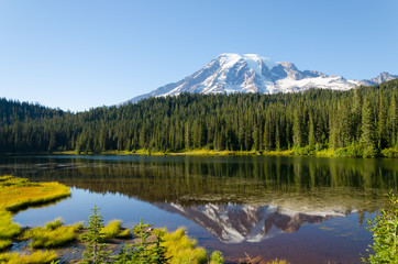 Mt Rainier in the lake