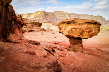 Rock called mushroom in dry Negev desert, Israel