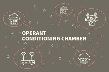 Conceptual business illustration with the words operant conditioning chamber