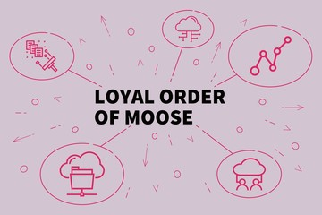 Conceptual business illustration with the words loyal order of moose
