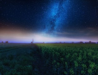 Nigh landscape with starry sky over field of blooming rape seed