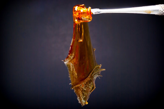 Cannabis Concentrate - Strain: Tangie Live Resin