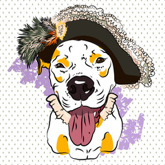 Stylish original drawing with a bulldog in a hat with ruches. Vector illustartion.