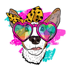 Ð¡ool summer print for your T-shirt with fashionable dog. Colorful vector design.