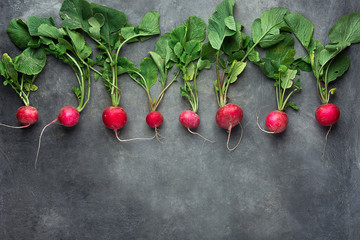 Row of Fresh Raw Organic Red Radishes with Greenn Leaves Arranged in Upper Row Border on Dark Concrete Stone Background. Copy Space for Text. Website Banner Poster Template. Vegetarian Supefoods