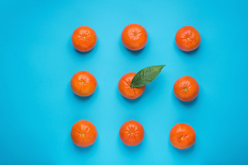 Bright Ripe Tangerines Arranged in Rows in Square One with Green Leaf in Middle. Blue Background. Styled Creative Image. Tropical Fruit Vacation Summer Vegan Concept
