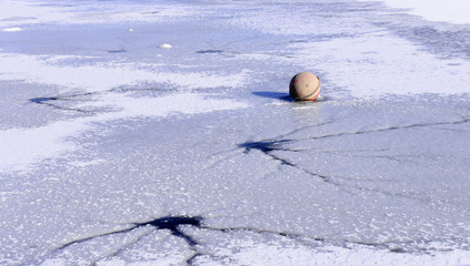 The fishing buoy, on the ice after the snow
