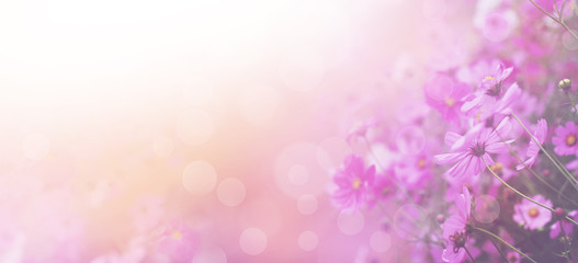 Violet color floral abstract background.