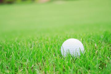 golf ball on green lawn.