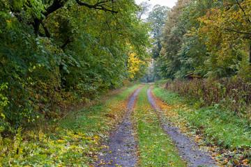 Herbstimpressionen aus dem Selketal im Harz