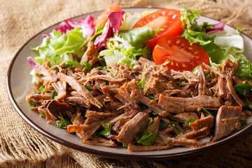 pulled spicy beef with fresh vegetables close-up on a table. horizontal