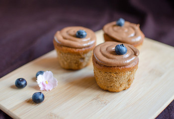 Chocolate coffee cupcakes decorated with blueberries on wooden board on dark background