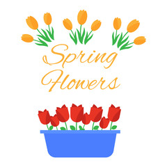 Spring flowers. Cute vector spring flowers icons. Simple flowers vector