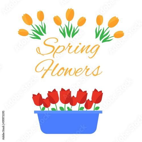Spring flowers cute vector spring flowers icons simple flowers spring flowers cute vector spring flowers icons simple flowers vector mightylinksfo