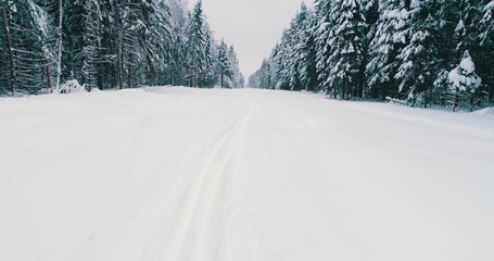 Top down view of the forest in winter. Winter landscape in the forest. Flying over ski track in winter forest. Top down view of ski road. Drone follow the walking girl skier at ski track.