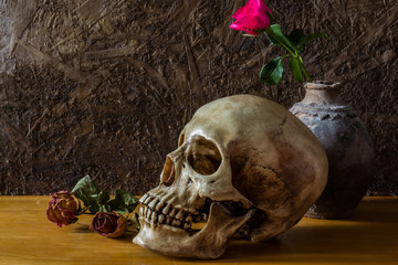 Still life with human skull with red rose in the old vase