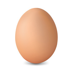 Fresh Egg Isolated