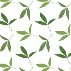 Spring pattern of hand drawn leaves on a white background. Vector illustration