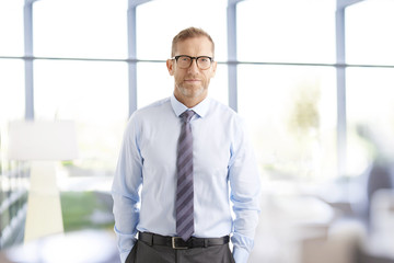 Executive businessman at the office. Smiling senior investment advisor business man wearing shirt and tie while standing at the office and looking at camera.