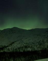 Aurora borealis over snowy landscape