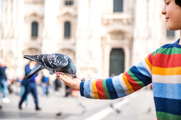 Boy feeding pigeon on hand in square, Milan, Lombardy, Italy