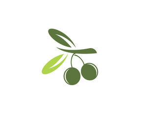 olive logo template vector illustration