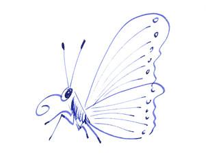 Zeichnung eines Schmetterlings