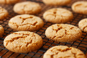 Ginger Snaps on a Cooling Rack