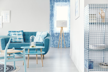 Blue living room with sofa