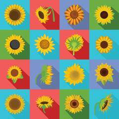 Sunflower blossom icons set. Flat illustration of 16 sunflower blossom vector icons for web